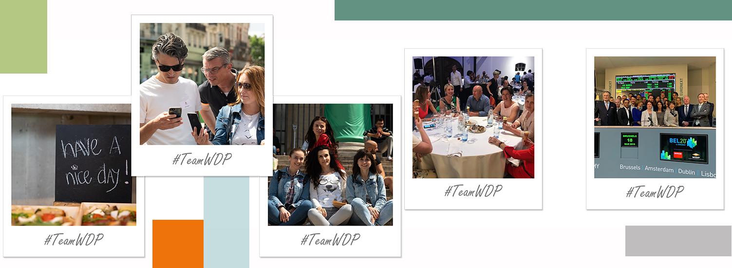 TeamWDP activities 1